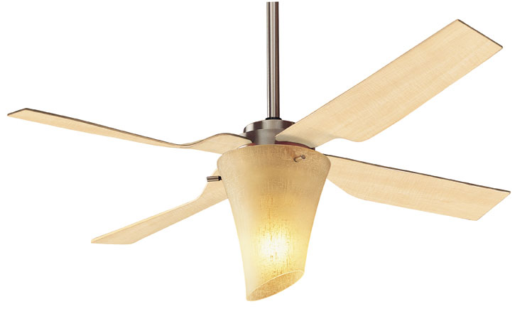 The hunter zoe series - Curved blade ceiling fan ...